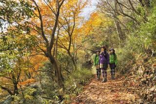 紅葉の筑波山を散策