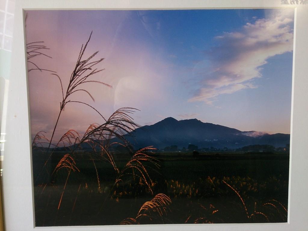 四季の写真展作品(初秋)